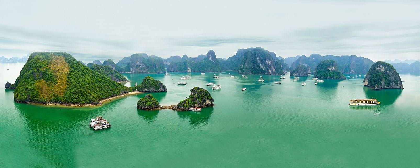 Des spécialistes du Vietnam sont à votre écoute